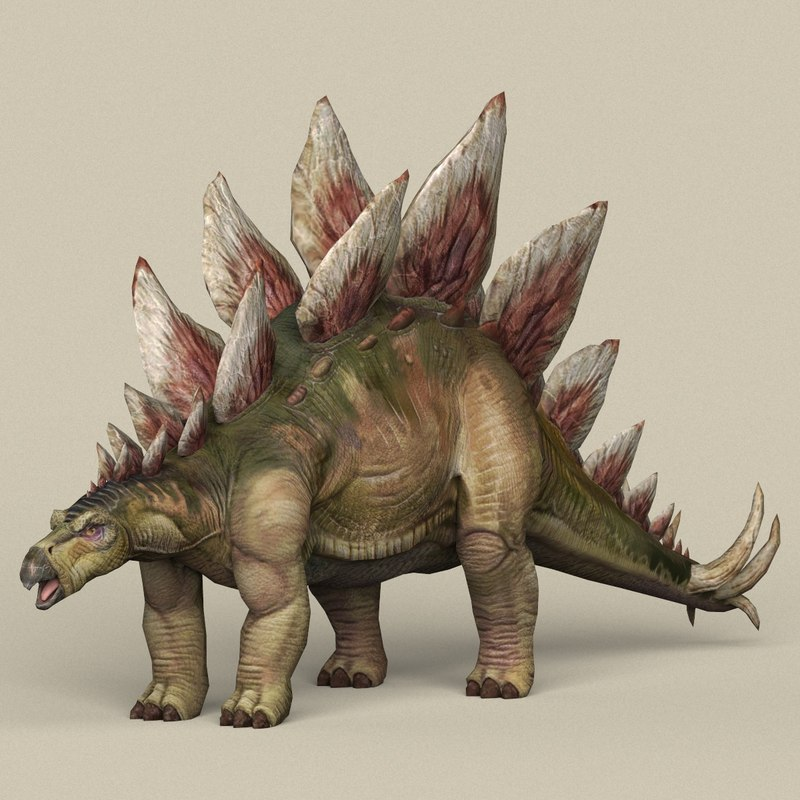 ready dinosaur stegosaurus 3D model