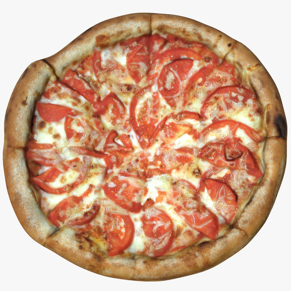 pizza 1 model
