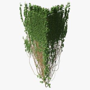 3D model ivy pbr branches