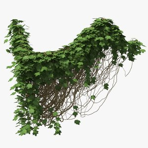 ivy pbr branches 3D model