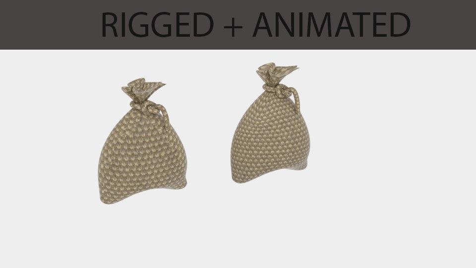 bag sack anim 3D