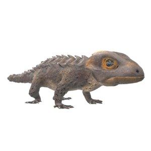 crocodile skink 3D