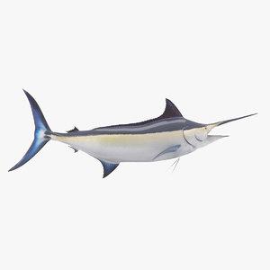 black marlin fish 3D model