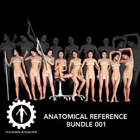 Anatomical Reference Bundle 001