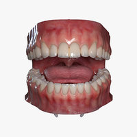 3D realistic mouth rigged