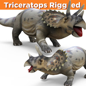 3D triceratops rigged