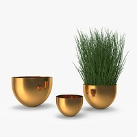 3D brass bowl model