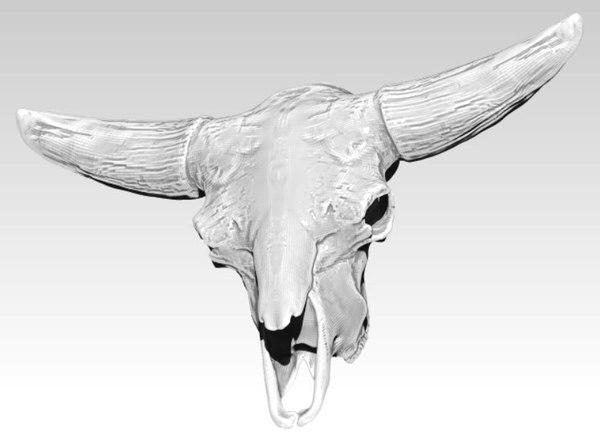 3D skull head