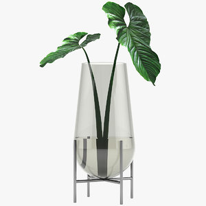 3D model anthurium vase decoration