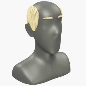 3D model hairstyle old man hair