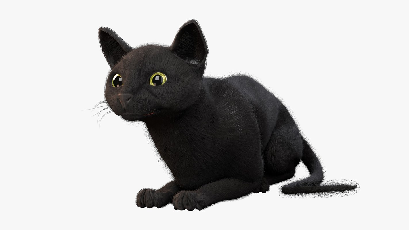 rigged cat black animations 3D model