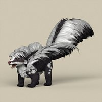 ready animal skunk model