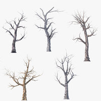 Low Poly Dead Tree Pack
