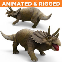 3D realistic triceratops rigged animation