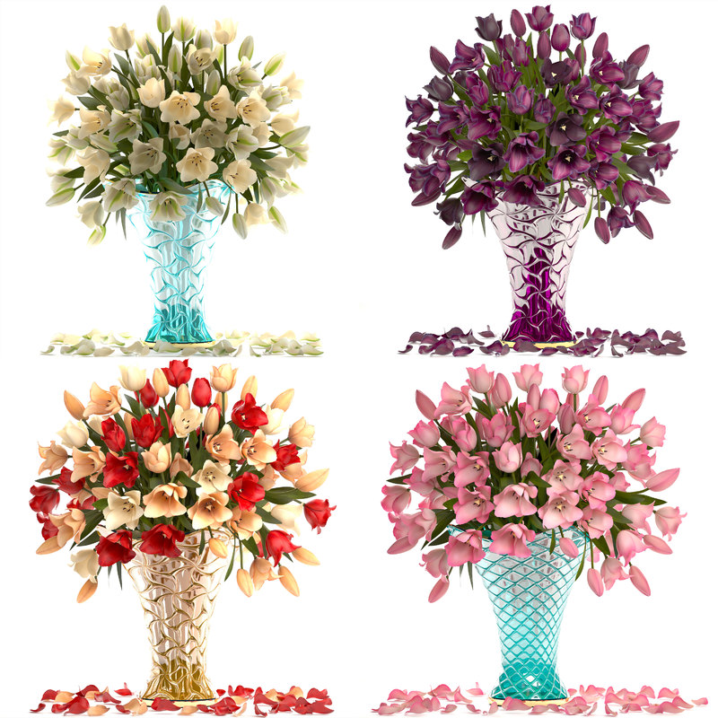 bouquets tulips flowers model