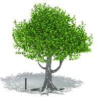 tree nature 3D model