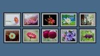 3D model photo frames flower