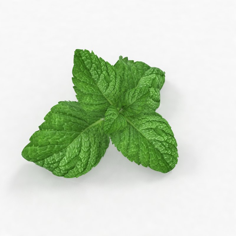 3D model lemon mint food