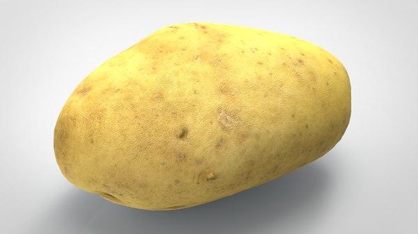 food vegetable potato 3D model