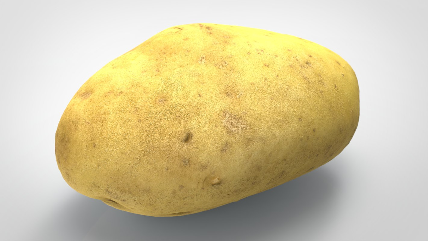 food vegetable potato 3D model