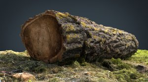 dead trunk 3D model