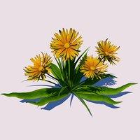 3D dandelion flower