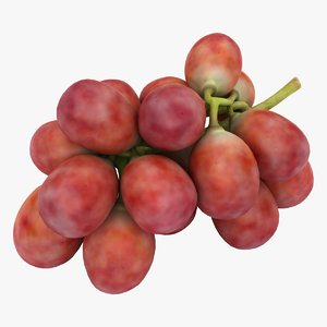 realistic red grapes 2 3D