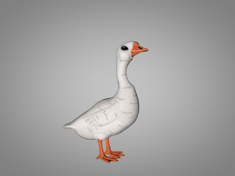3D goose