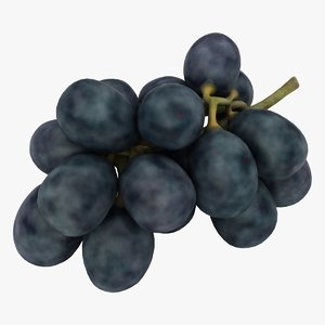 realistic black grapes 3D model