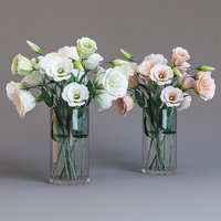 3D white eustoma