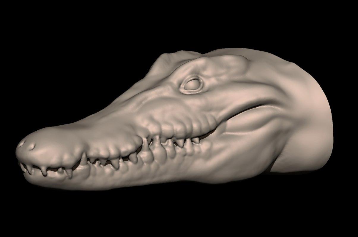 3D crocodile head model
