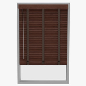 classical blinds 3D model
