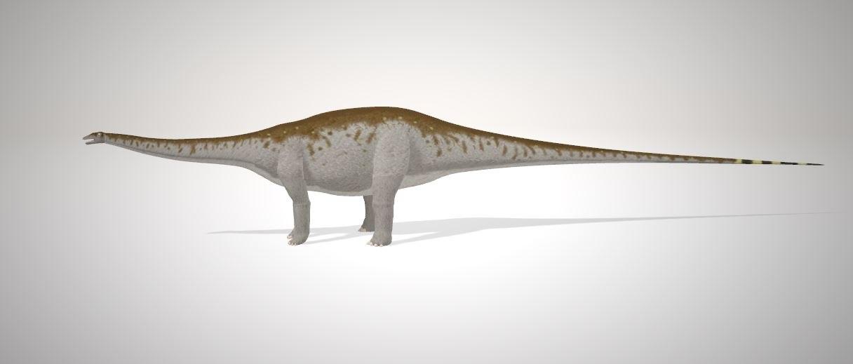 apatosaurus dinosaurs 3D model