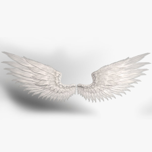 3D realistic wings
