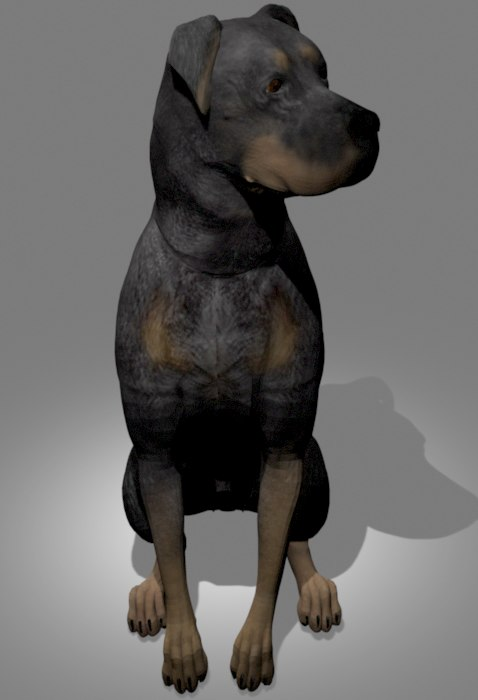 3D doberman dog