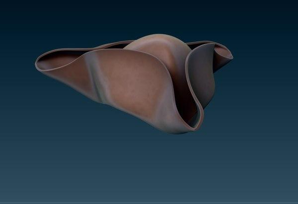 pirate hat - corsair 3D