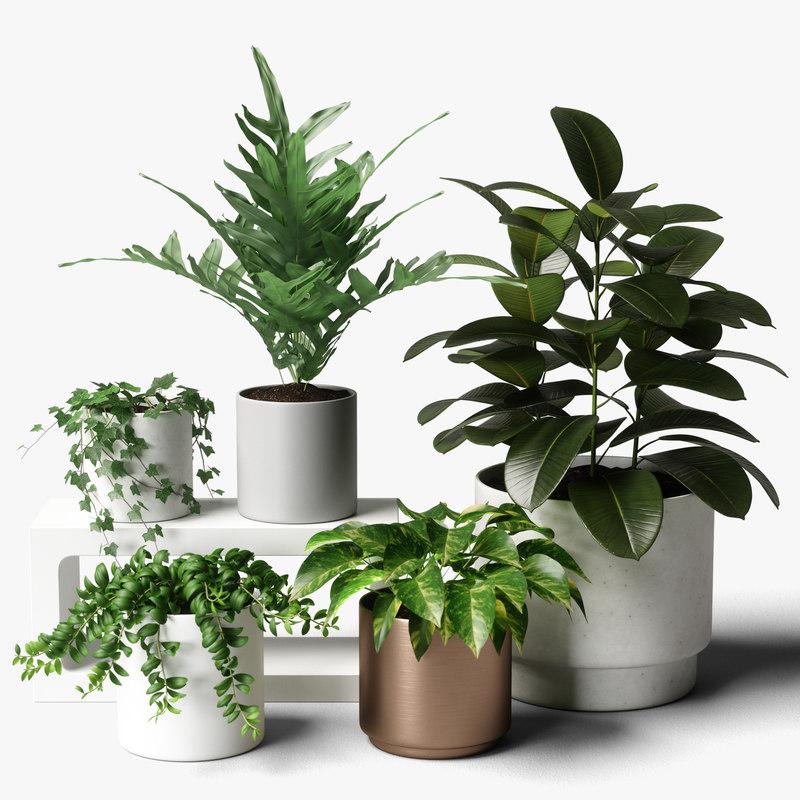 plants set 06 3D