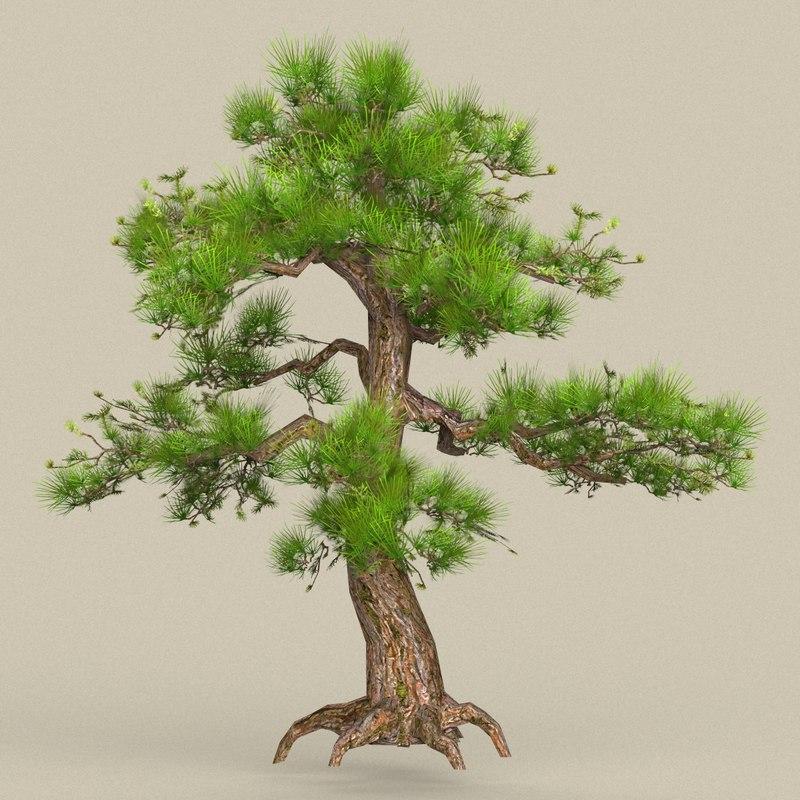 tree materials 3D model