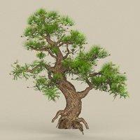 tree materials 3D