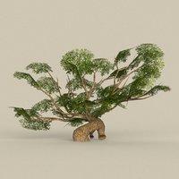 3D tree materials