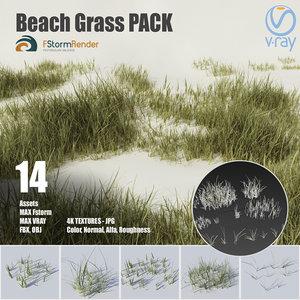 3D beach grass pack plants