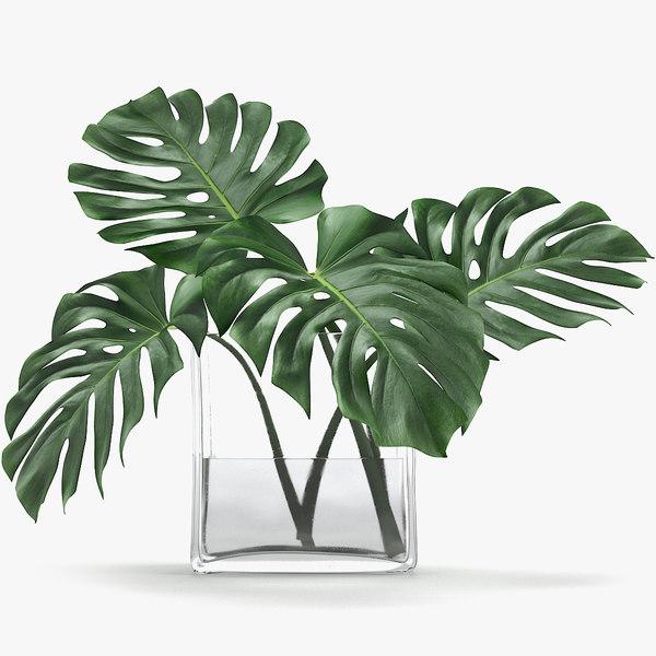 3D monstera leaves model