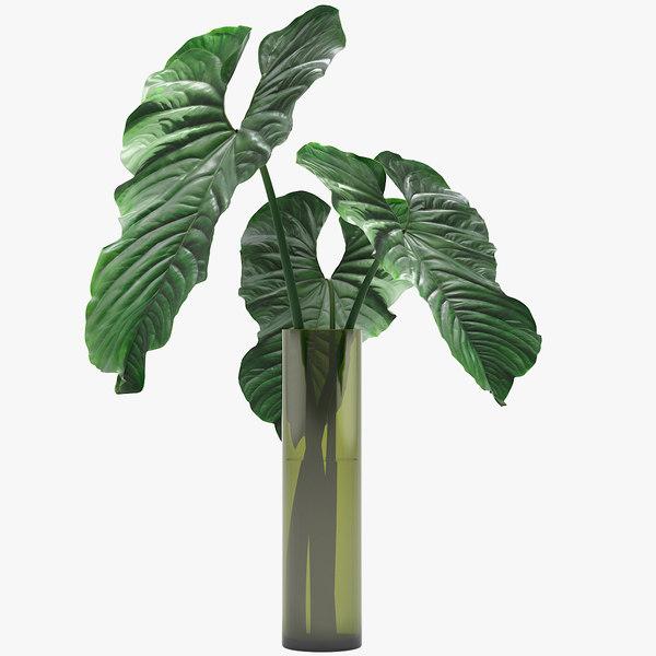 3D anthurium plant flower