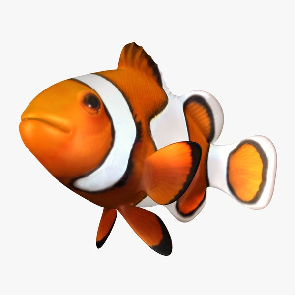 3D clownfish rigged