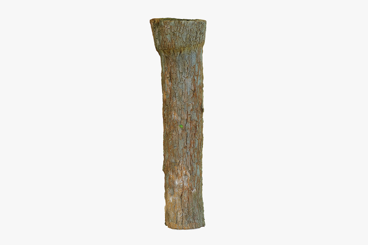 3D tree trunk 190cm model