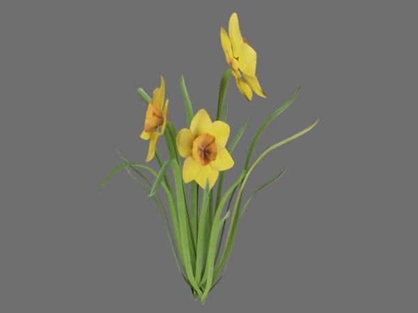 3D model daffodil plant flowers