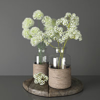 Bouquets 2 - decorative onions and gypsophila