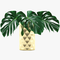 monstera leaves l model