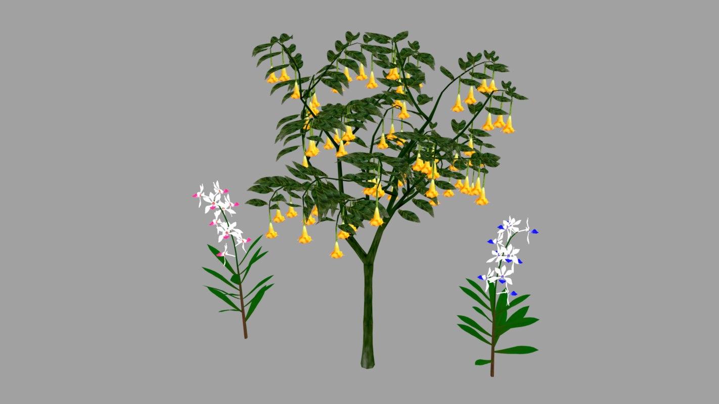 nature plant flower 3D model