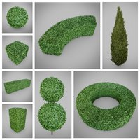 hedge shrub nature 3D